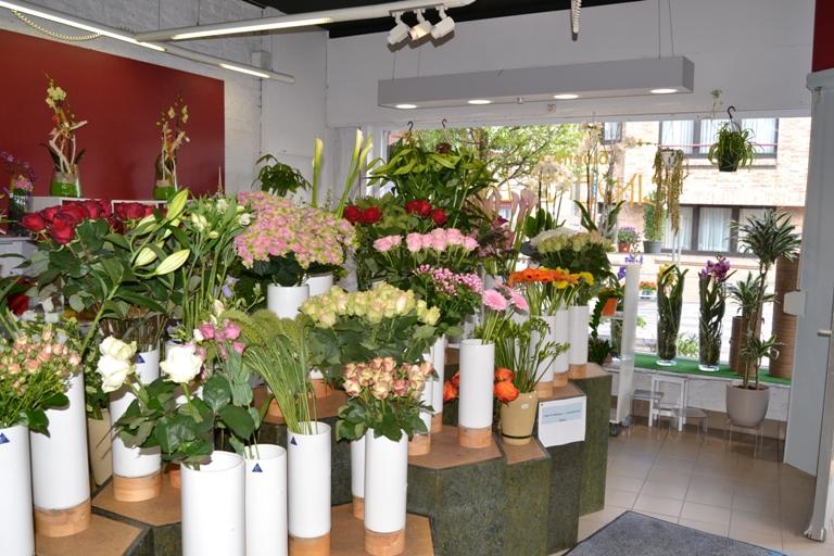 Goede Nieuwpoort - Enige bloemenzaak op toplocatie te koop | Overnameweb OX-23